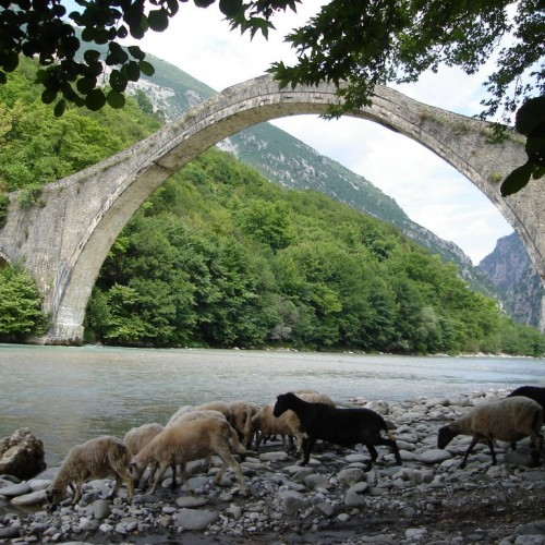 Stone bridge in Zagorochoria